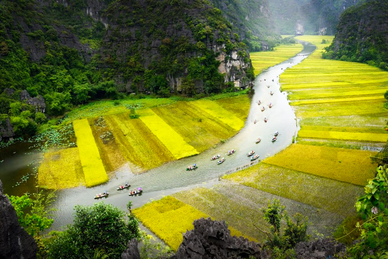 Beautiful-Tam-Coc-rice-fields
