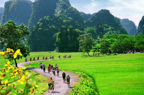 Cycling-near-tam-coc-rice-fields