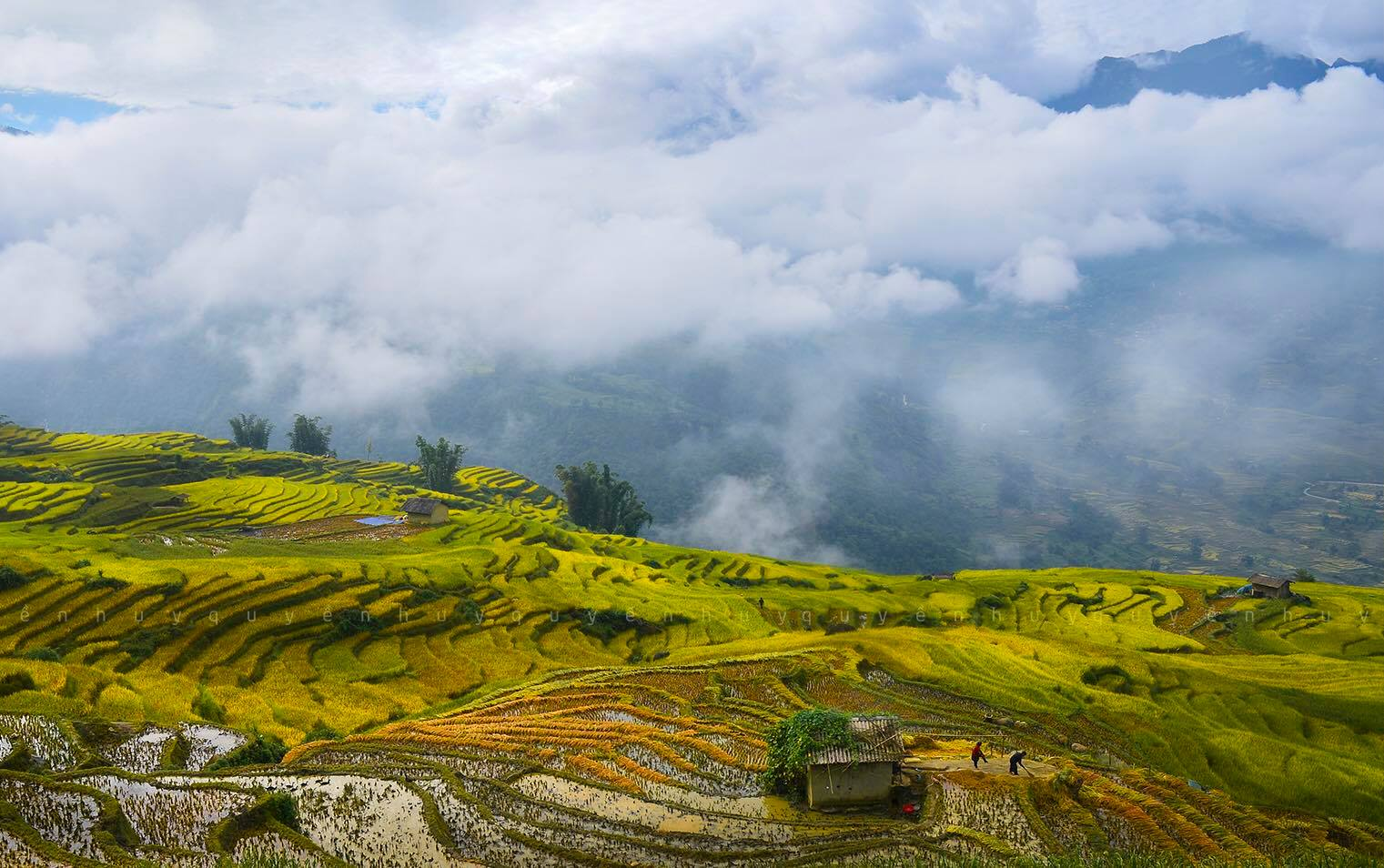 A-beauty-of-Sapa
