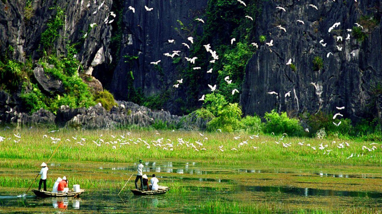thung-nham-bird-garden