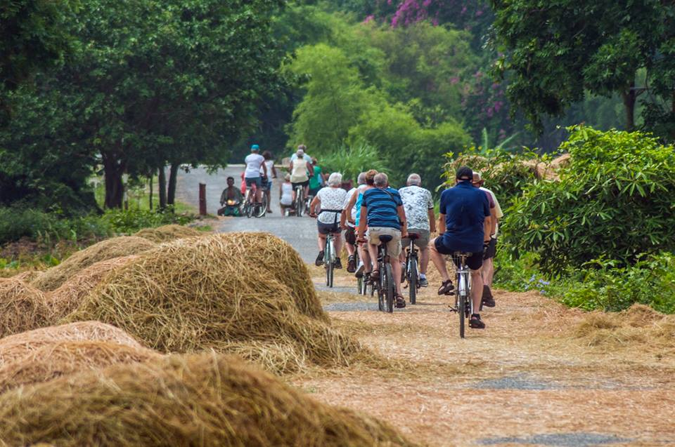 biking-on-countryside-road-in-ninh-binh
