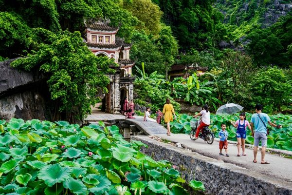 bich-dong-pagoda-in-lotus-season